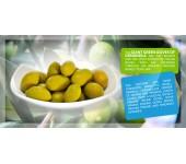 Giant green olive 1.9kg